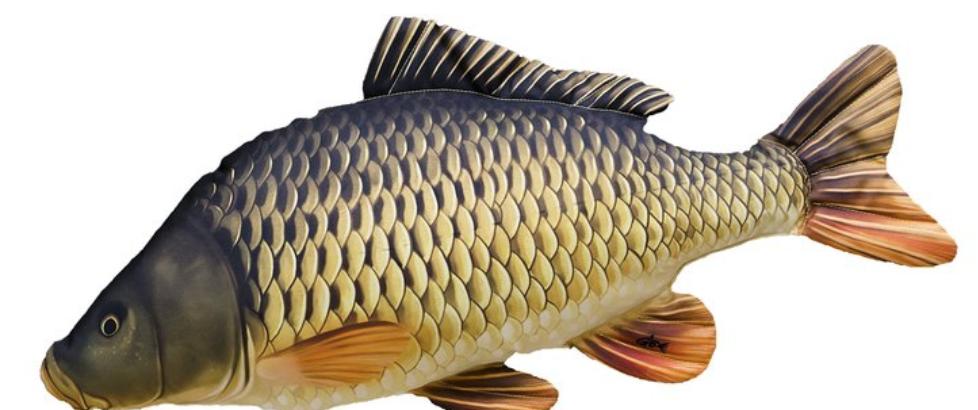 polštáře ve tvaru rybiček